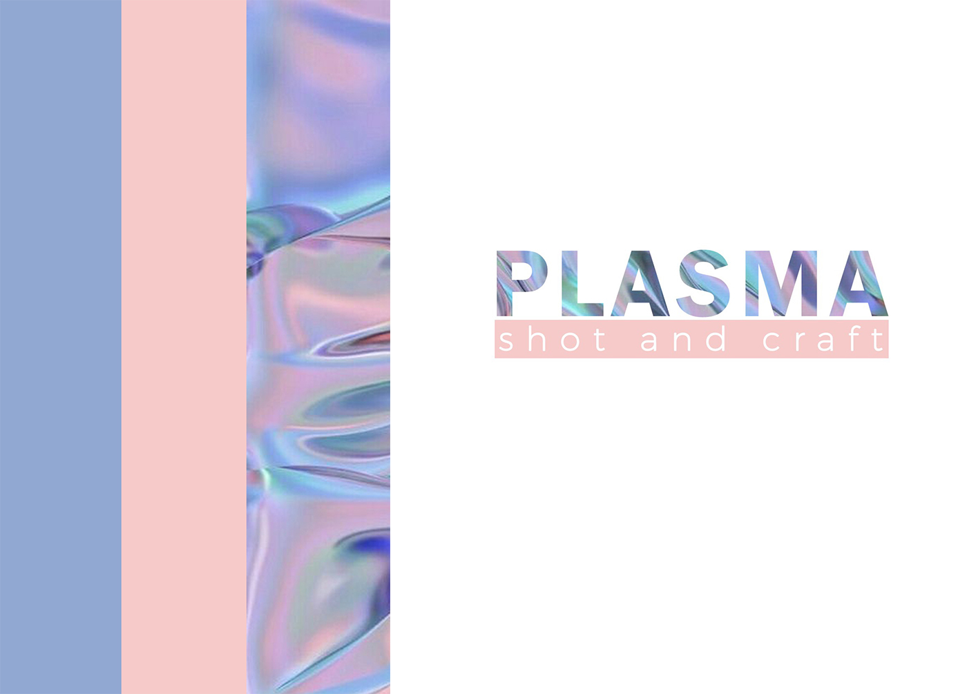 Workshop Plasma – 28 aprile 2019 –